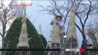 Trees prepared for winter at Sapporo park