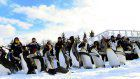 Penguins march in show of solidarity at Hokkaido zoo