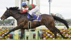 Horse Racing: 7th pick Epoca d'Oro wins 1st race in Japanese triple crown