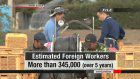 Japan's revised immigration law takes effect