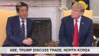 Abe, Trump meet for White House summit
