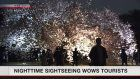 Shinjuku Gyoen night event wows foreign visitors