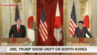 Abe, Trump present unity on North Korea