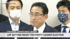 LDP getting ready for party leader election