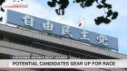 LDP chooses scaled-down election over regular race
