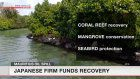 Japan firm funds Mauritius oil spill recovery