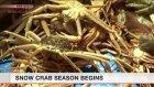 Snow crab fishing season begins in Fukui