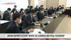 Japan experts start work on carbon-neutral roadmap