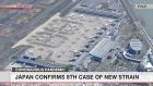 Japan confirms 8th case of new strain