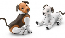 Sony's Latest Aibo Dog Is Considerably Less Creepy