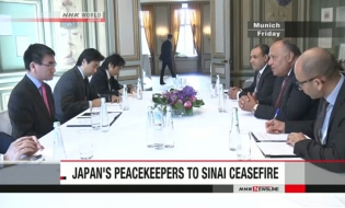 Japan's part in Sinai cease-fire appreciated