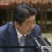 Abe: Japan-Russia peace treaty to mark off border