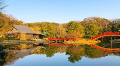 Lisa's In and Around Tokyo: Kanazawa--Bask in the age-old cultural retreat in Kanagawa