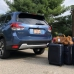 Subaru Forester Luggage Test | Cargo capacity, suitcases, specs