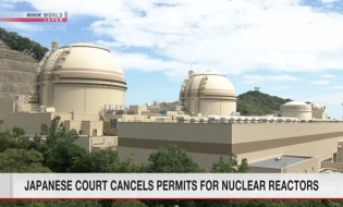 Court nullifies regulator approval for 2 reactors